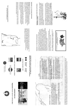 BROCHURE LABORATORIO 02b